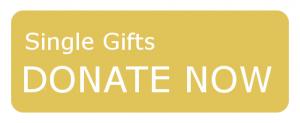 Single Donations Button